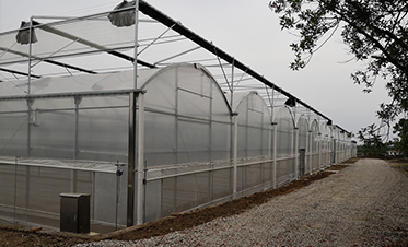 武汉园林种苗中心