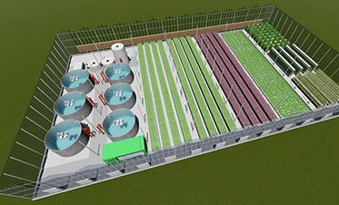 鱼菜共生温室模型