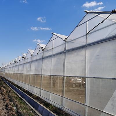 尖顶避雨薄膜温室
