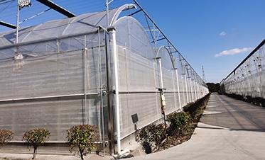 农创园温室
